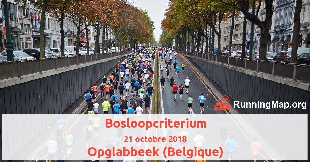 Bosloopcriterium