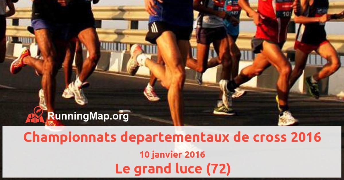 Championnats departementaux de cross 2016