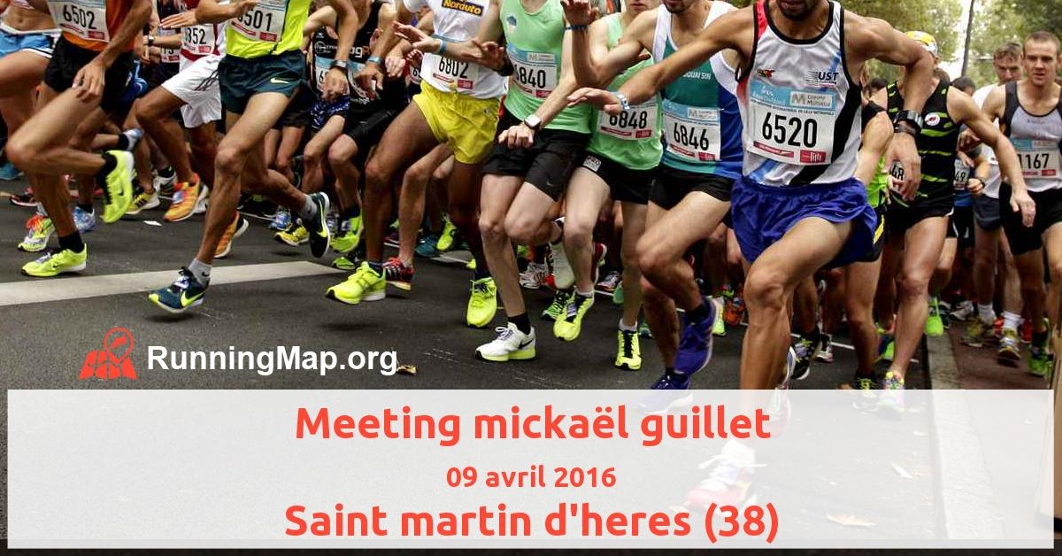 Meeting mickaël guillet