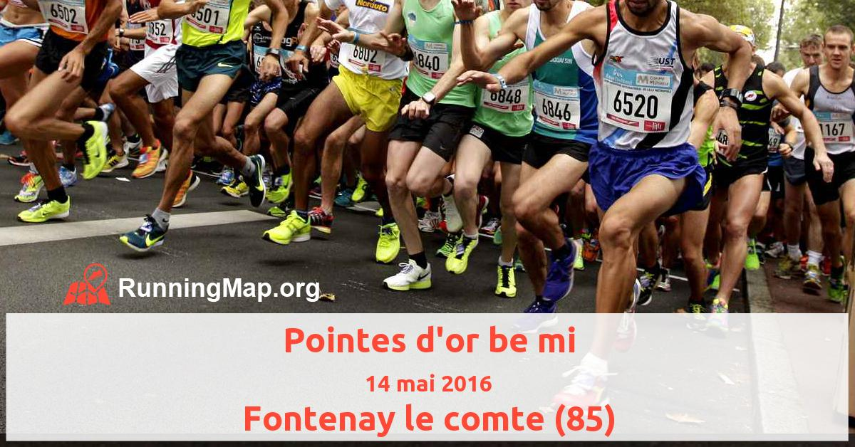 Pointes d'or be mi