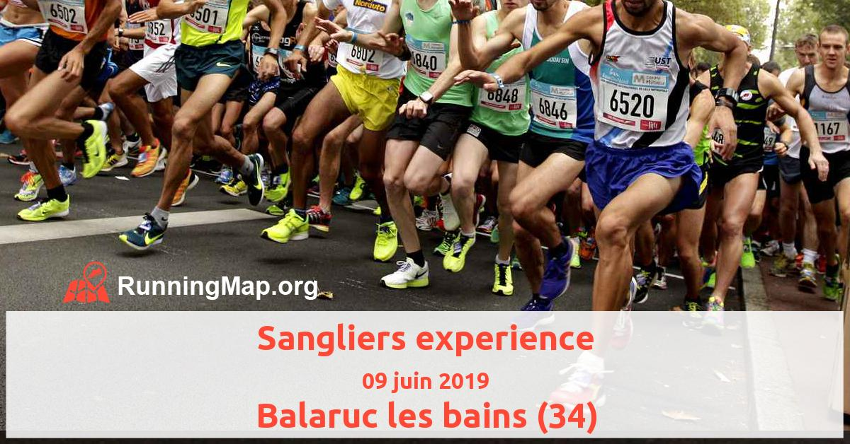 Sangliers experience