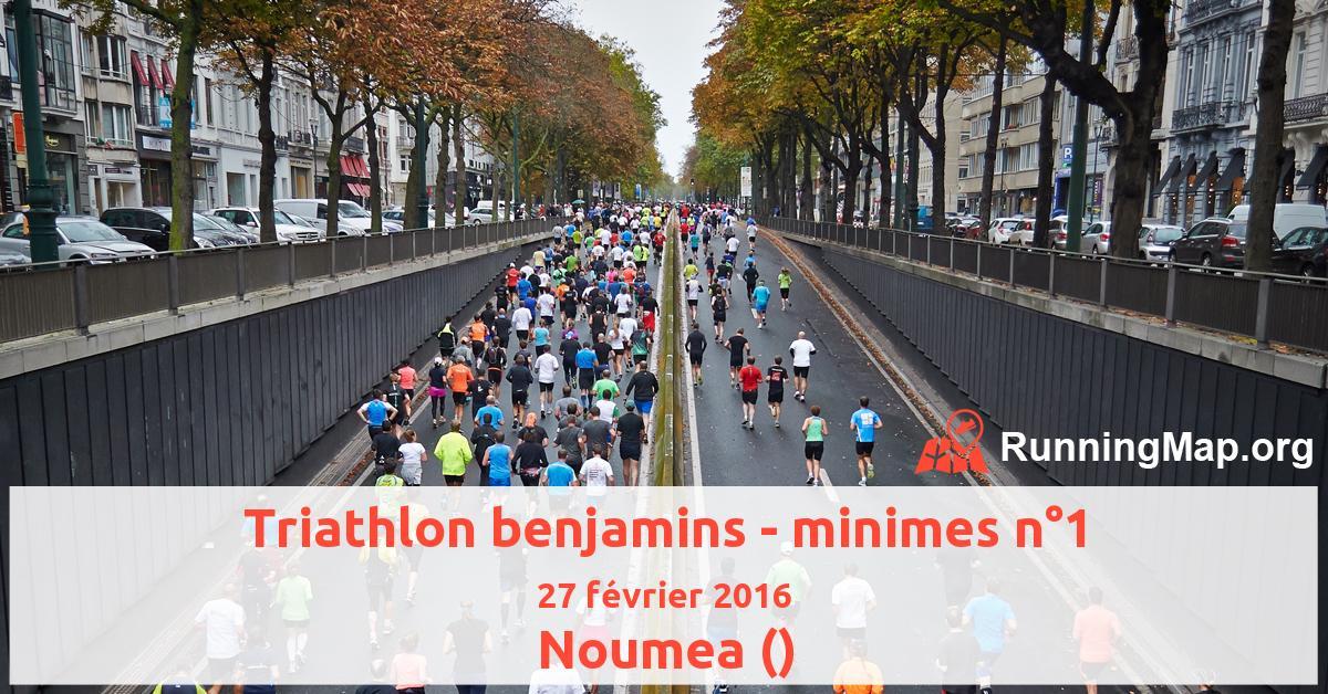 Triathlon benjamins - minimes n°1