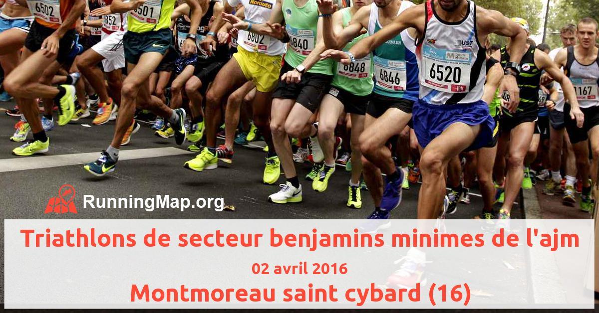 Triathlons de secteur benjamins minimes de l'ajm